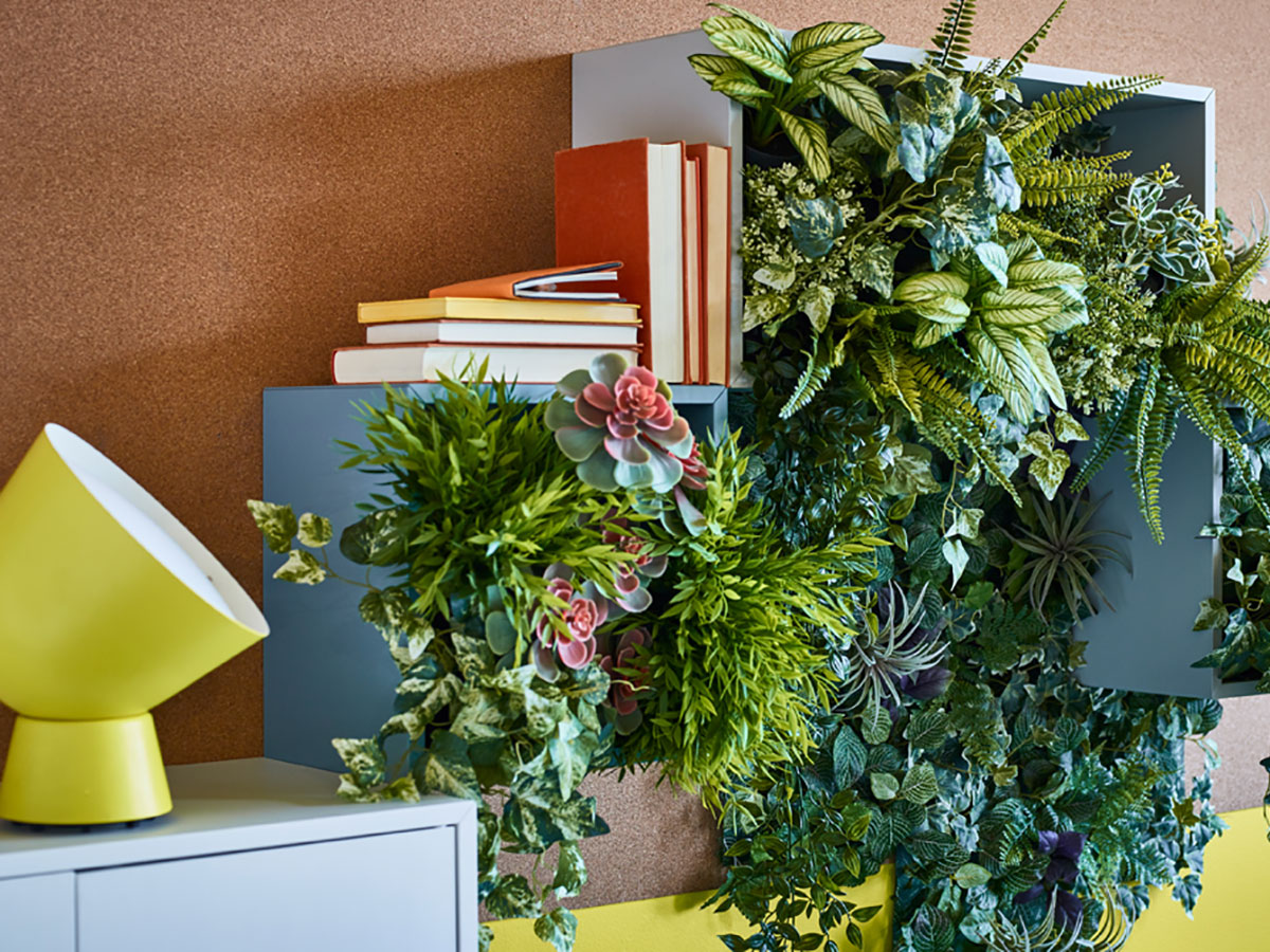 How to Get Started with Indoor Plants