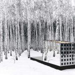Eco-Friendly Glass House