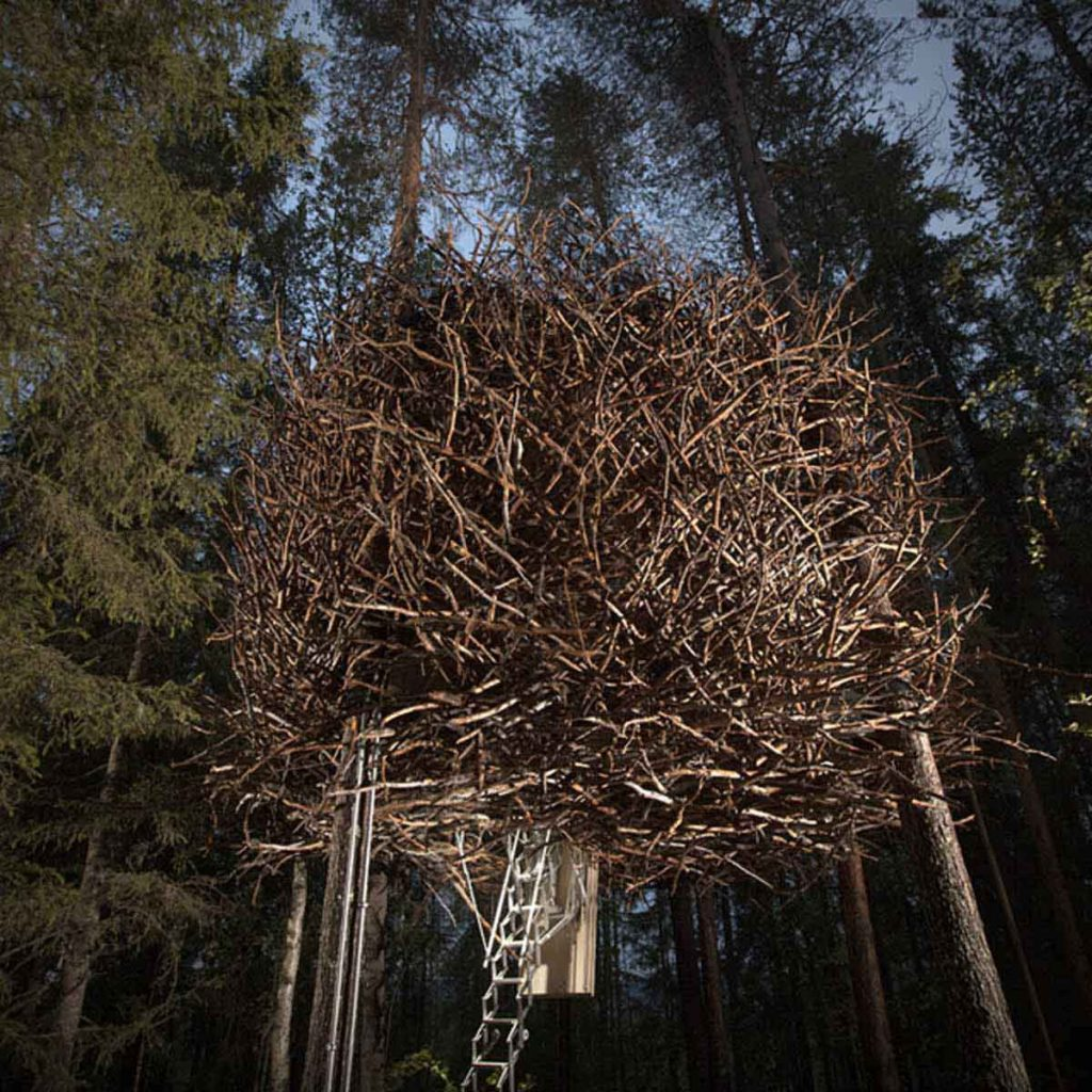 The Bird's Nest Treehouse