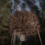 The Bird's Nest Treehouse